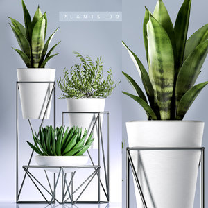 plants 99 planters indoors 3D model