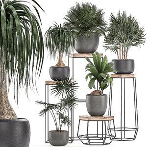 decorative plants pots stand 3D