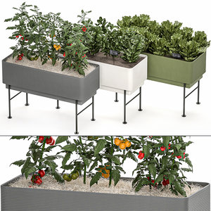 kitchen garden pots home 3D model