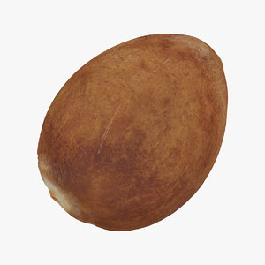 3D avocado hass 02 seed