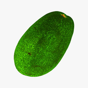 bacon avocado 01 raw 3D model