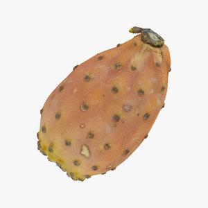 3D cactus fig 04 raw model