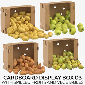 cardboard display box 03 3D model