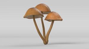 3D mushroom cluster