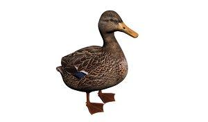 3D model duck realistic modeled