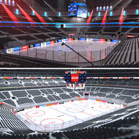 Hockey Arenas Collection