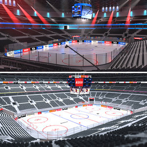3D hockey arenas