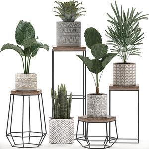 decorative plants pots stand 3D model