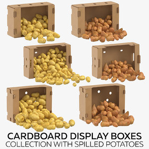 3D cardboard display boxes spilled model