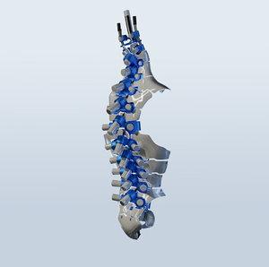 spine mechanical 02 3D model
