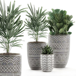 decorative plants pots interior 3D model