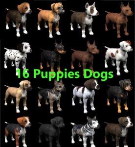 3D dog pi