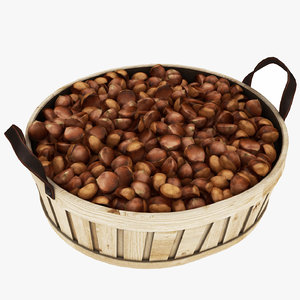 3D model chestnuts nut