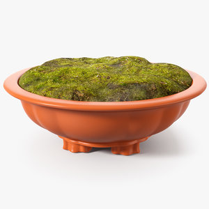 3D model wide shallow flower pot