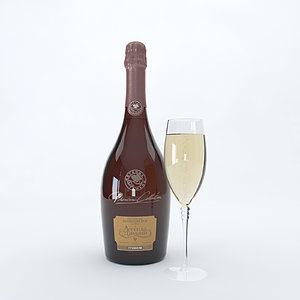 3D champagne bottle settings 2 model