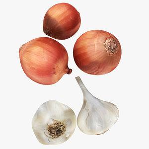 garlic onion 3D