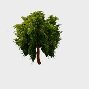tree animation 3D model