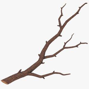 3D branch 03