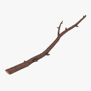 branch 02 model