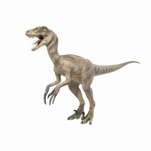 velociraptor dinosaur animations 3D