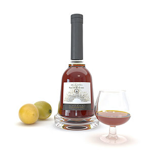 cognac chardonnay 3D model