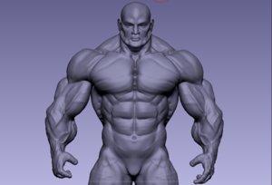 bodybuilder body 3D model