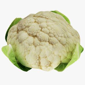 3D model cauliflower flower