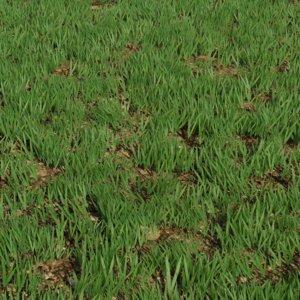 3D modular grass 2