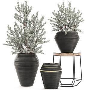 decorative interior pots eucalyptus model