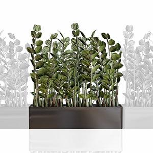 modular plant zamioculcas black 3D