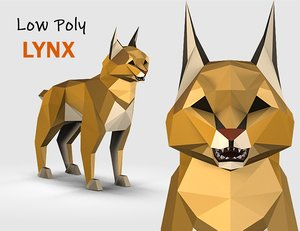 3D animations polys