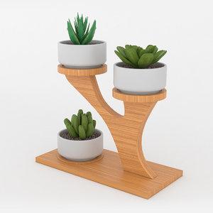 mini bonsai plants 3D model