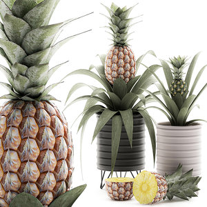 3D model decorative pineapple pot interior