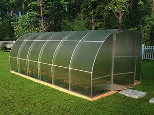 3D greenhouse tomato model