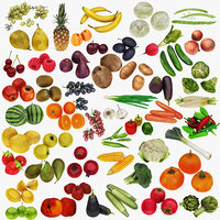 Mega Fruit and Vegatable Collection 50 in 1