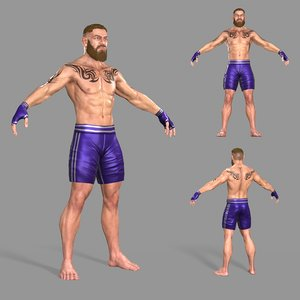 3D real boxer