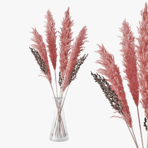 3D bouquet pampas grass