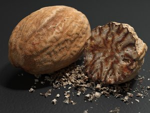 nutmeg seed 3D