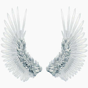 3D model realistic angel wings rigged