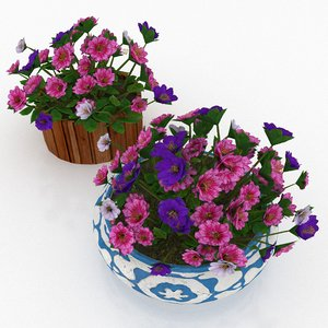 3D petunia colorful