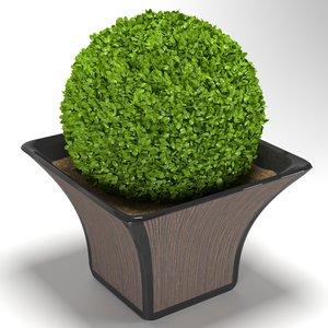 bush cache pot 3D model