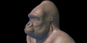 3D model gorila