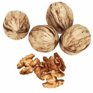 3D model walnut nut