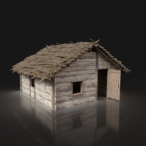 3D model aaa wooden thatched cottage