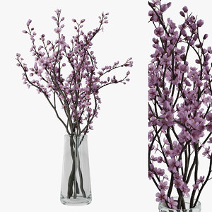 branches blossoming plum 3D