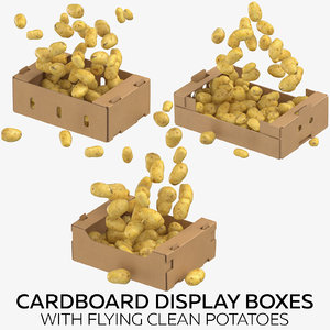 cardboard display boxes flying 3D