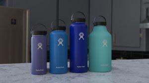 3D pack hydro flasks model