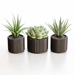 3D flowerpots black pots model