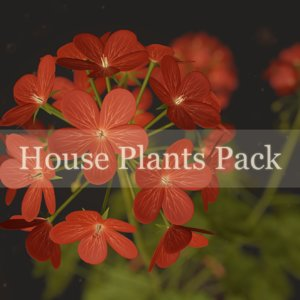 house plants pack ready 3D model