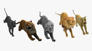pack lion tigers panther 3D model